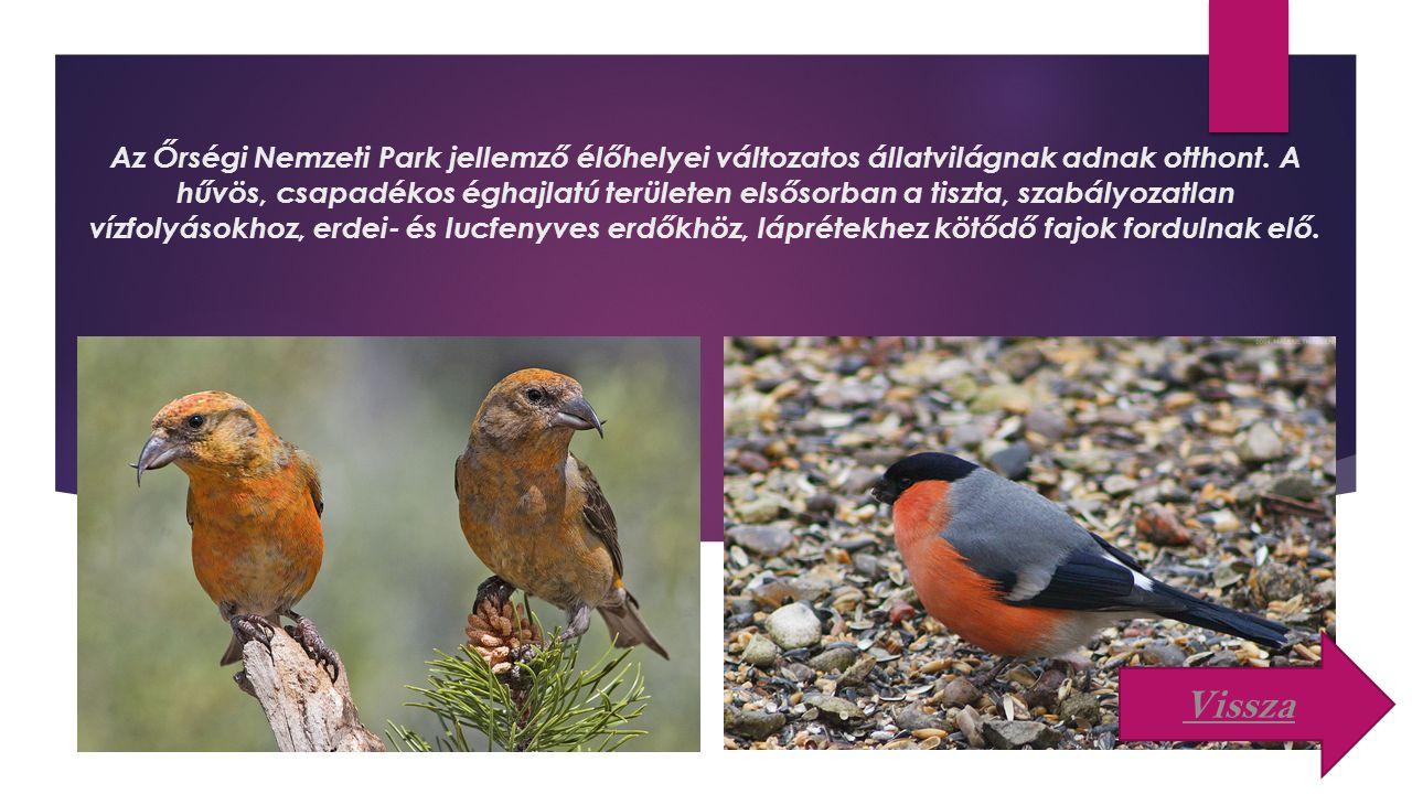 Az Őrségi Nemzeti Park jellemző élőhelyei változatos állatvilágnak adnak otthont.