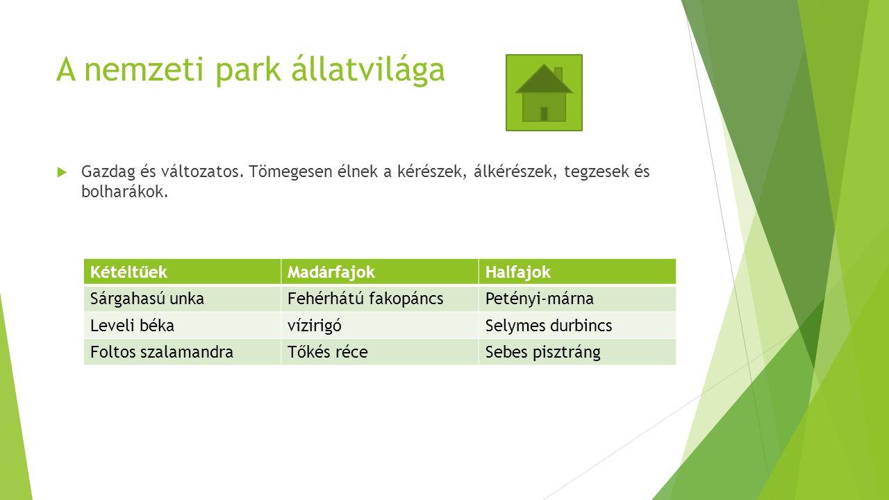 A nemzeti park állatvilága  Gazdag és változatos.