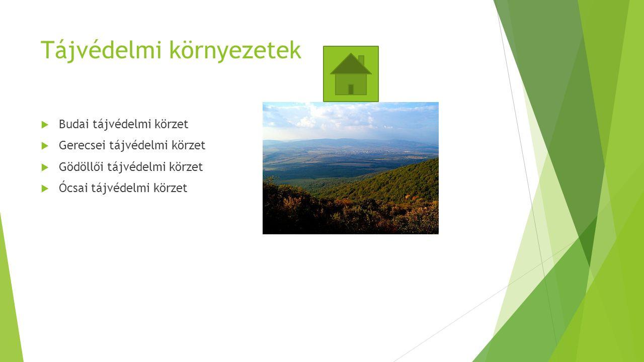 Tájvédelmi környezetek  Budai tájvédelmi körzet  Gerecsei tájvédelmi körzet  Gödöllői tájvédelmi körzet  Ócsai tájvédelmi körzet