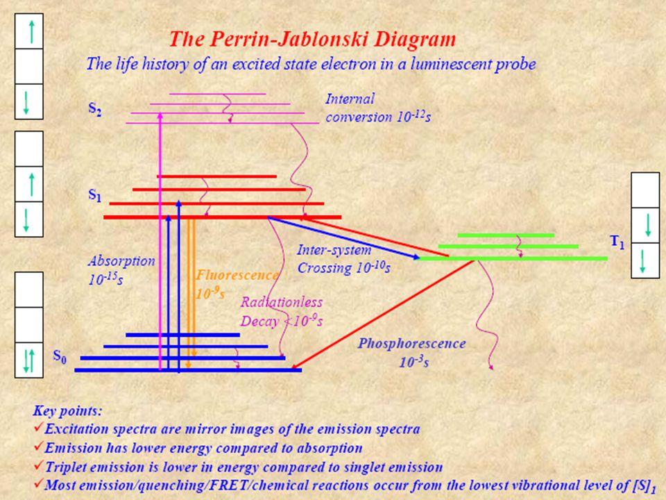 Excitonok és energia-átadás 1Ha a gerjesztési energia nagyon gyorsan átadódik, akkor nem lokalizálható egyetlen molekulára.