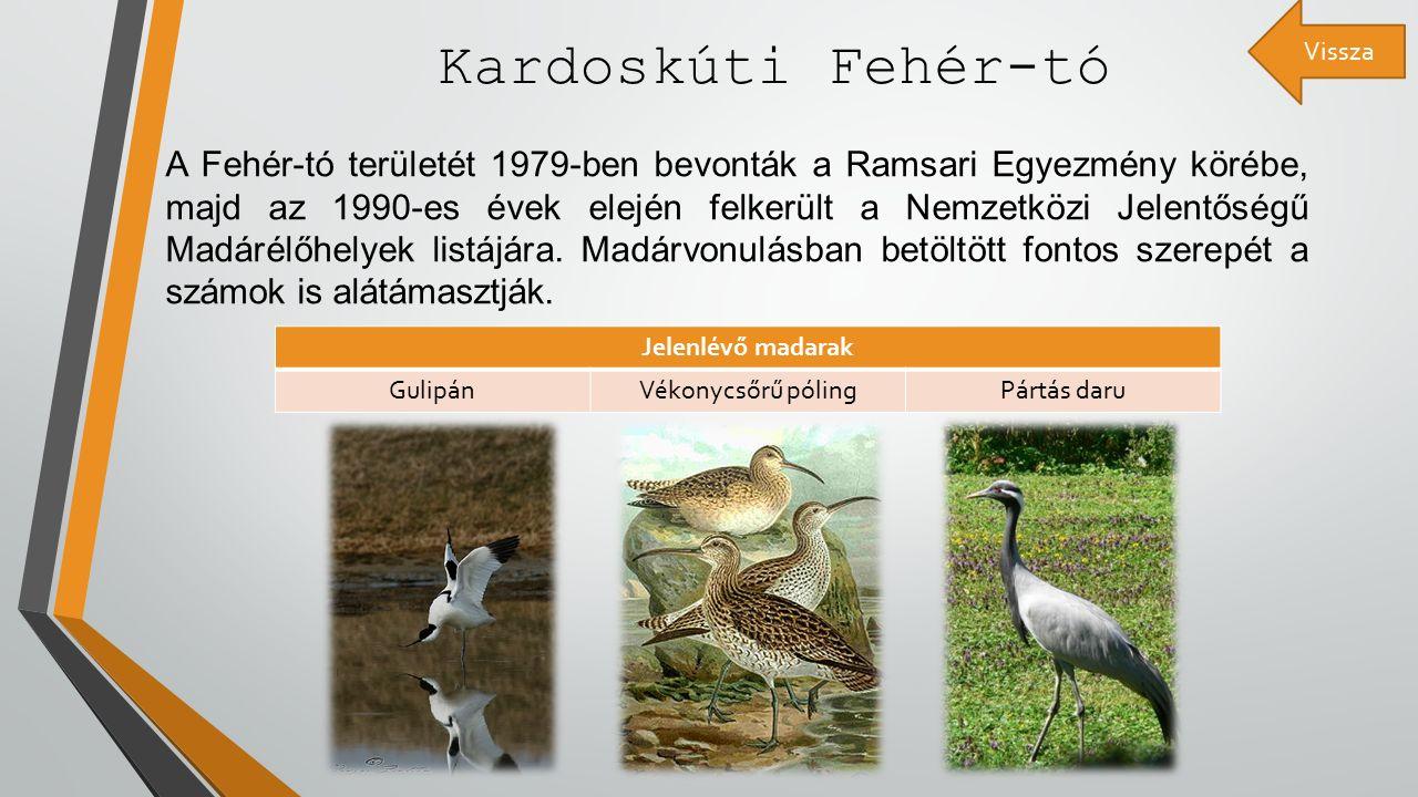 Kardoskúti Fehér-tó A Fehér-tó területét 1979-ben bevonták a Ramsari Egyezmény körébe, majd az 1990-es évek elején felkerült a Nemzetközi Jelentőségű Madárélőhelyek listájára.