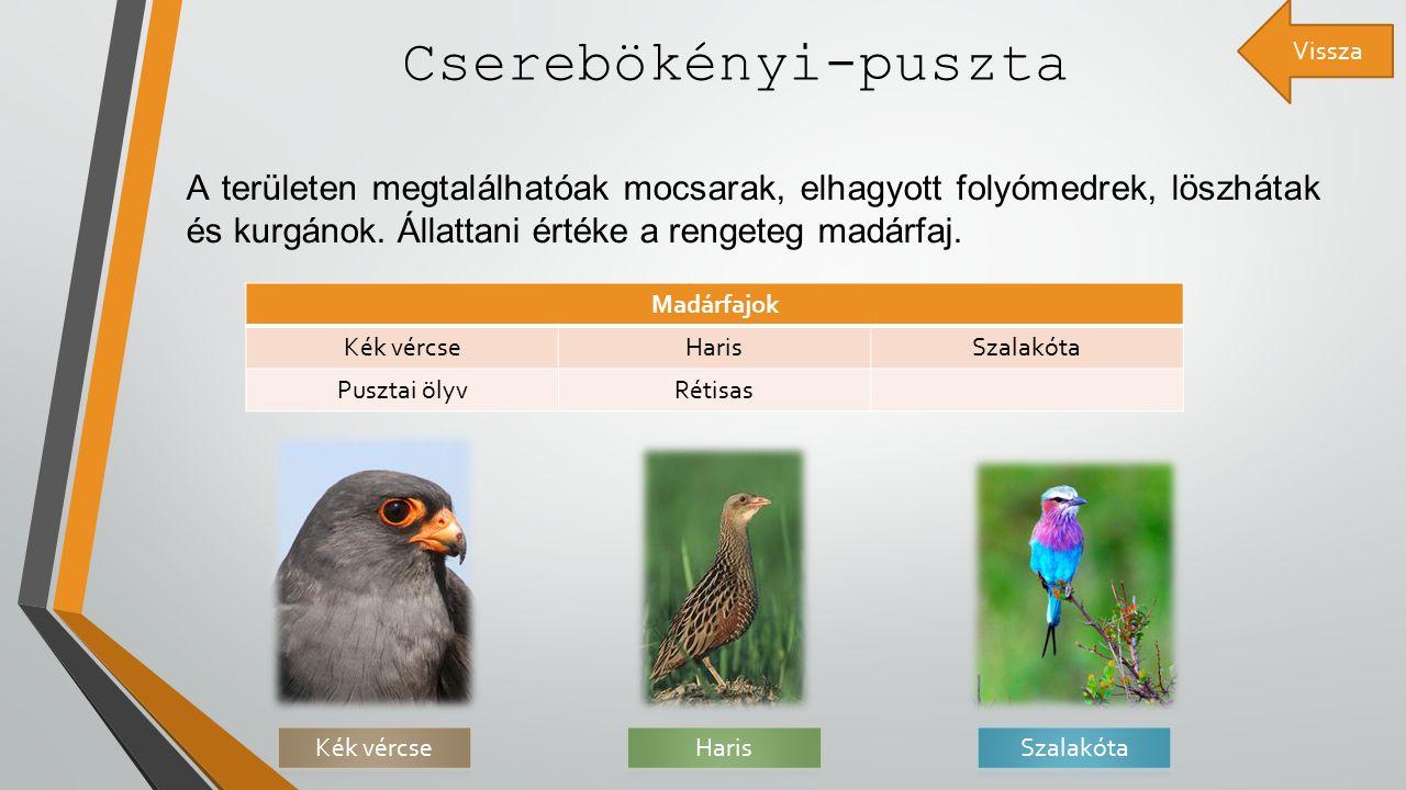 Cserebökényi-puszta A területen megtalálhatóak mocsarak, elhagyott folyómedrek, löszhátak és kurgánok.
