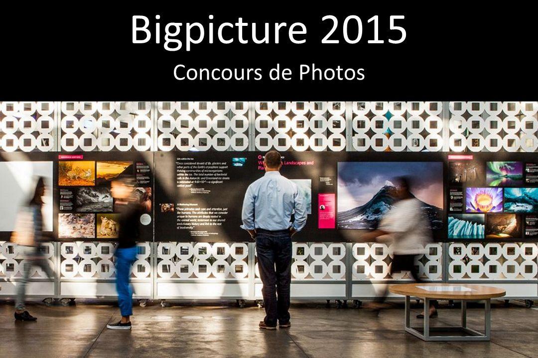 Bigpicture 2015 Concours de Photos