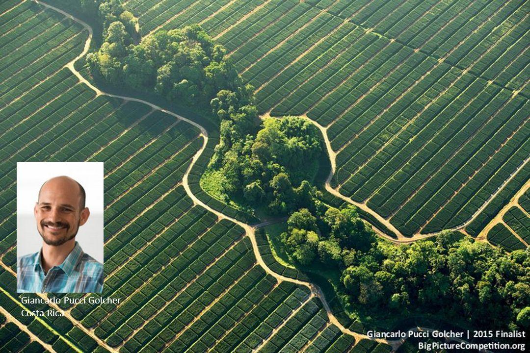 Hilary O Leary Harare, Zimbabwe 1° prix Catégorie : Préservation de la nature