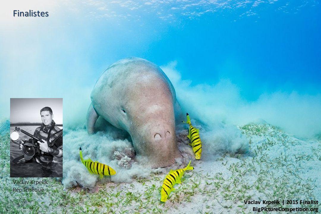 Beth Watson Missouri – USA 1 er prix Catégorie : La vie aquatique