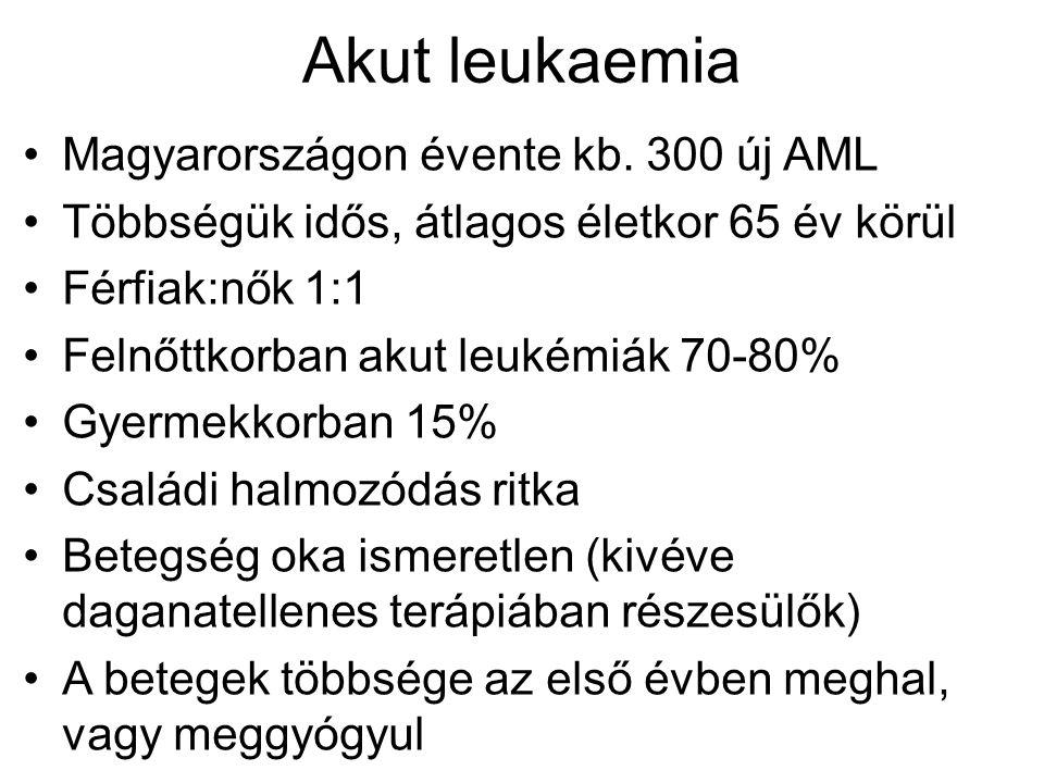 Akut leukaemia Magyarországon évente kb. 300 új AML Többségük idős, átlagos életkor 65 év körül Férfiak:nők 1:1 Felnőttkorban akut leukémiák 70-80% Gy