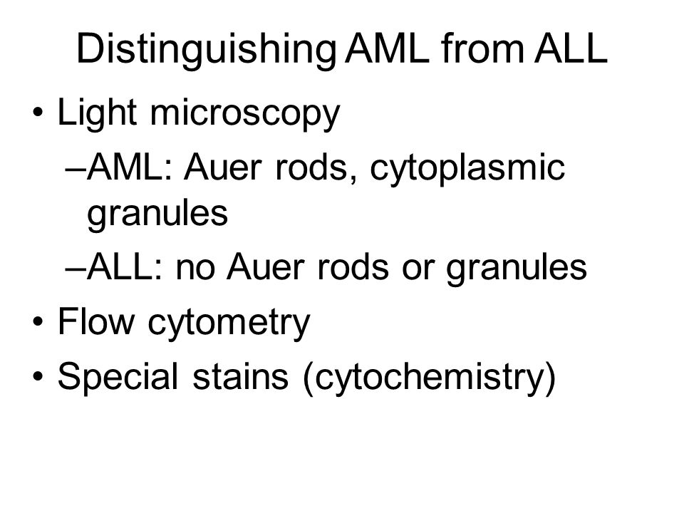Distinguishing AML from ALL Light microscopy –AML: Auer rods, cytoplasmic granules –ALL: no Auer rods or granules Flow cytometry Special stains (cytochemistry)