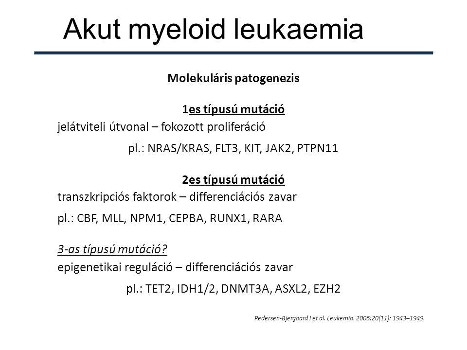 Akut myeloid leukaemia Pedersen-Bjergaard J et al. Leukemia. 2006;20(11): 1943–1949. Molekuláris patogenezis 1es típusú mutáció jelátviteli útvonal –