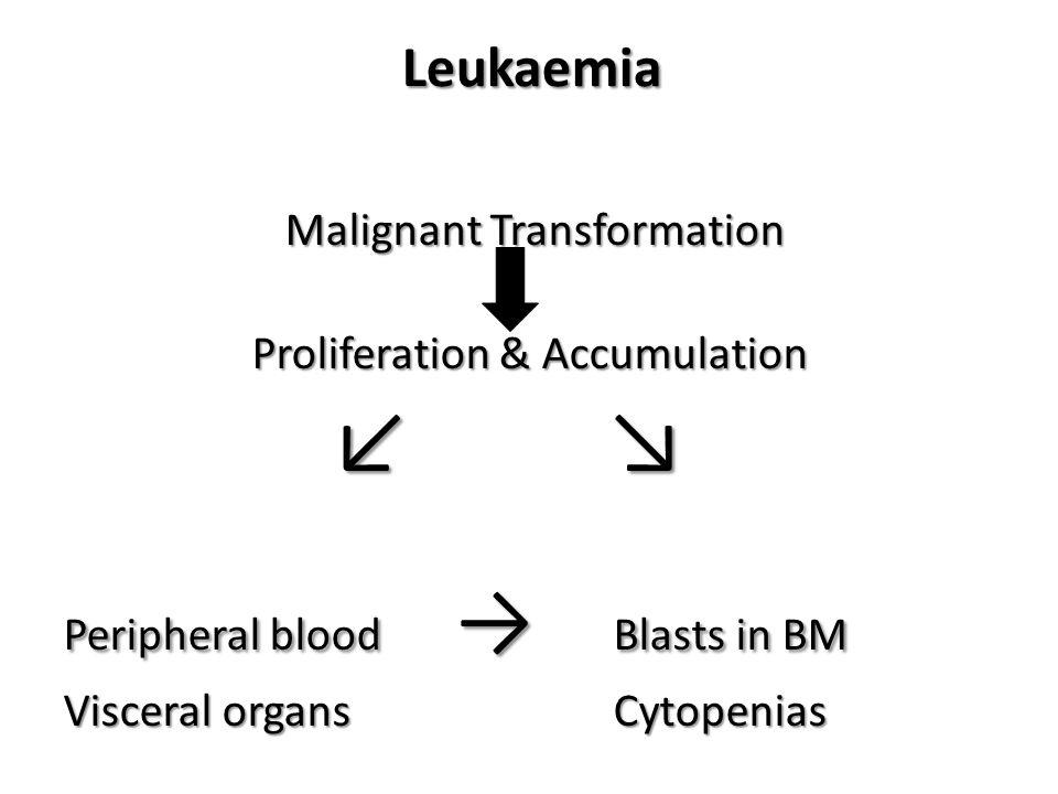 Acute Leukaemia accumulation of blasts in the marrow