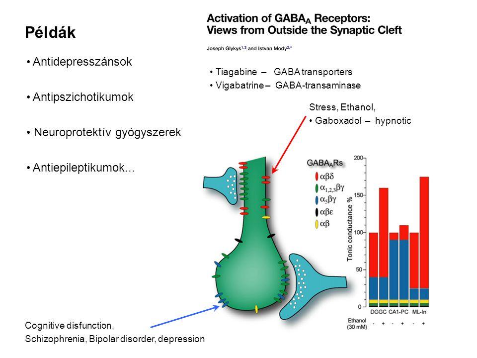 Példák Antidepresszánsok Antipszichotikumok Neuroprotektív gyógyszerek Antiepileptikumok... Tiagabine – GABA transporters Vigabatrine – GABA-transamin