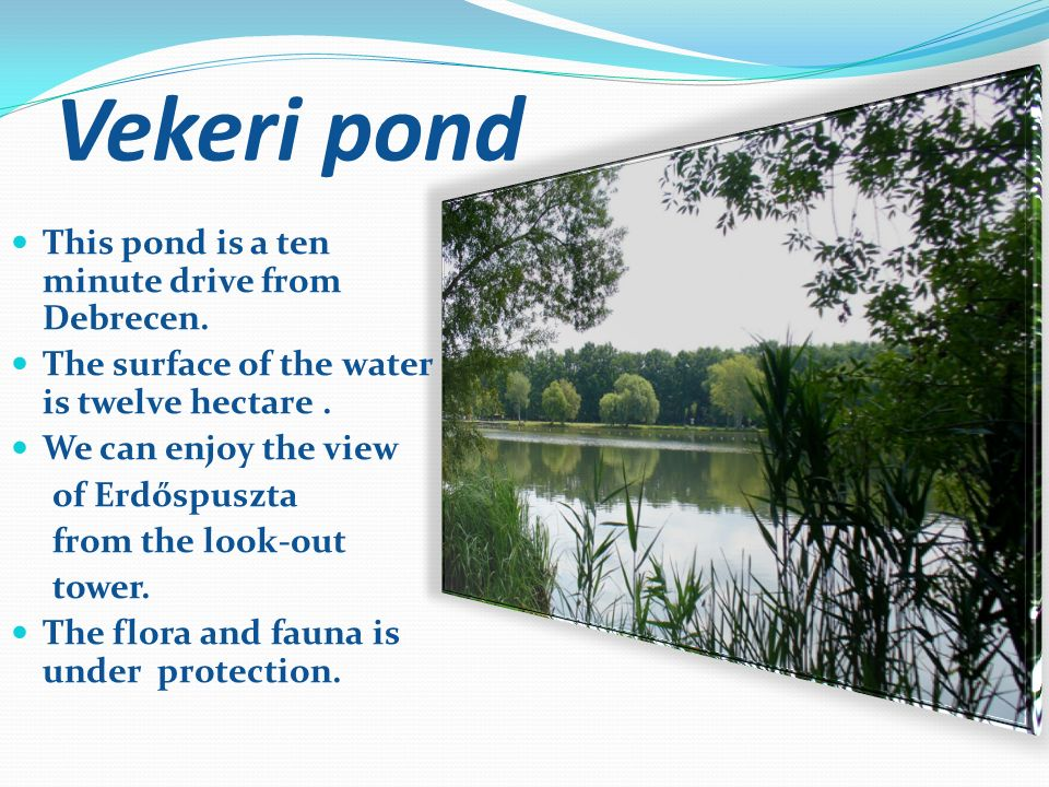 Vekeri pond This pond is a ten minute drive from Debrecen.