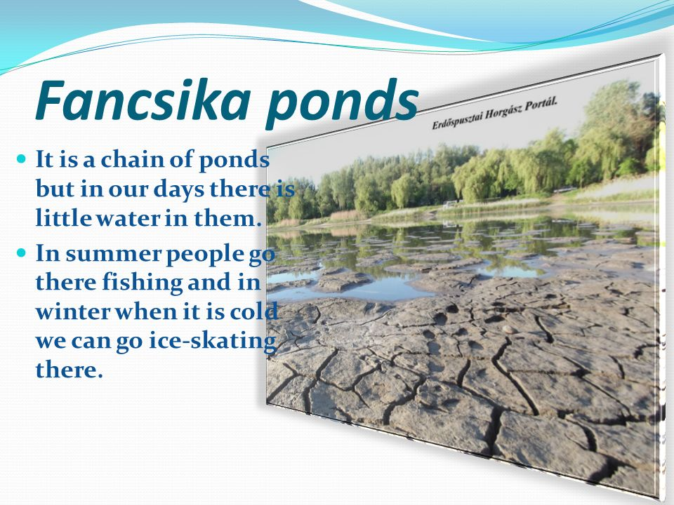 Pond of Látókép It is a Y-shaped water- basin.