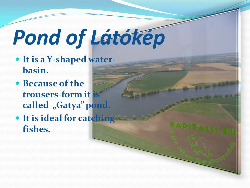 Pond of Látókép It is a Y-shaped water- basin.