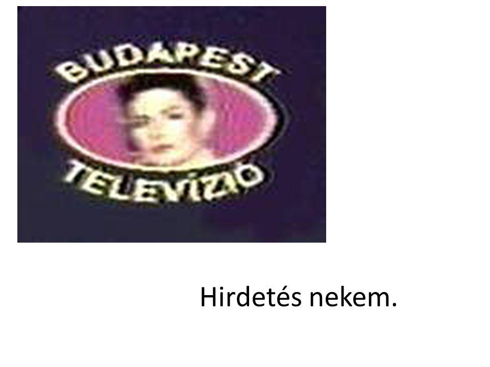 A Budapest TV műsorstruktúrájú, tematikus dokumentumcsatorna.