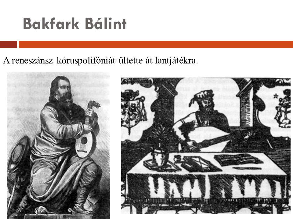 Bakfark Bálint A reneszánsz kóruspolifóniát ültette át lantjátékra.