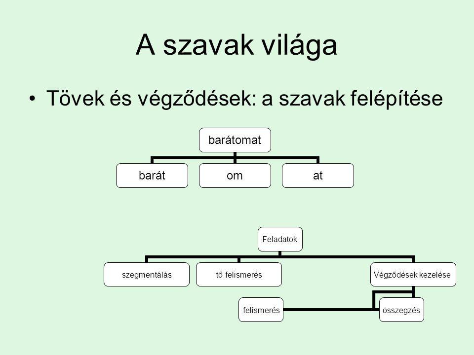 A korai kétnyelvű előnyei Kétnyelvűnél sűrűbb a szürke állomány a parietális kéregben Minél jobban tudja Minél korábban tanulta Bellugi, Bavelier: jel