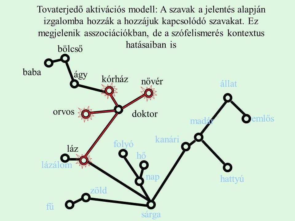 A szintek kölcsönhatása a konnekcionista felfogásban egy konkrét szó (TÉR) felismerésénél Találatok és Tévedések összjátéka