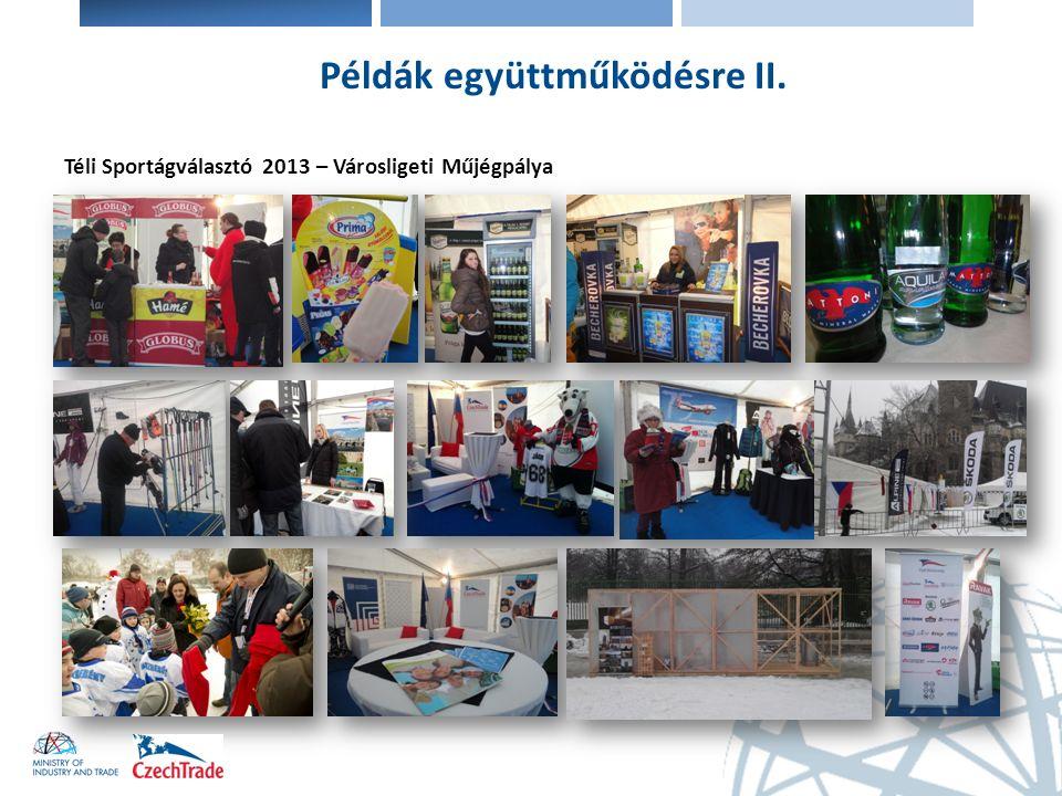 Téli Sportágválasztó 2013 – Városligeti Műjégpálya Példák együttműködésre II.