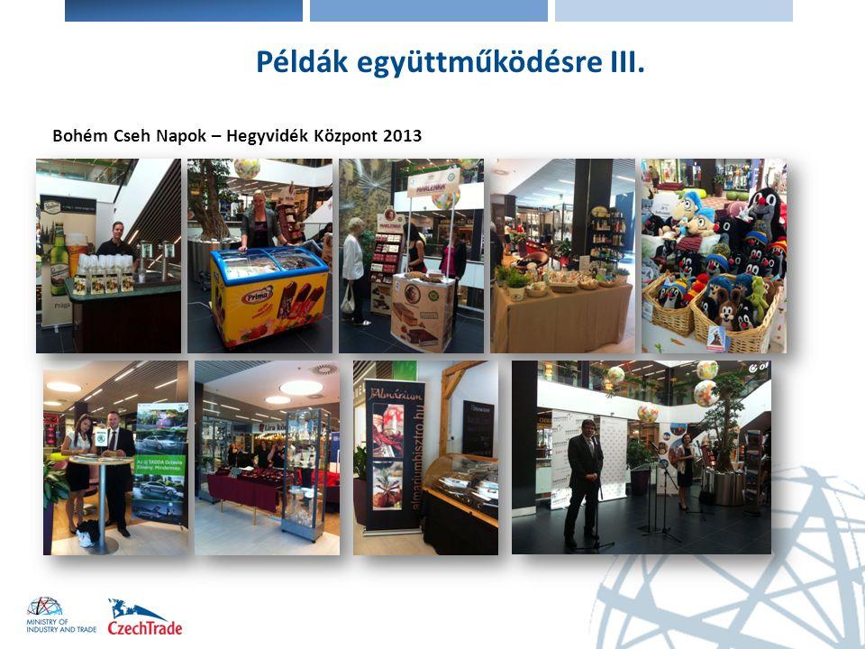 Bohém Cseh Napok – Hegyvidék Központ 2013 Példák együttműködésre III.