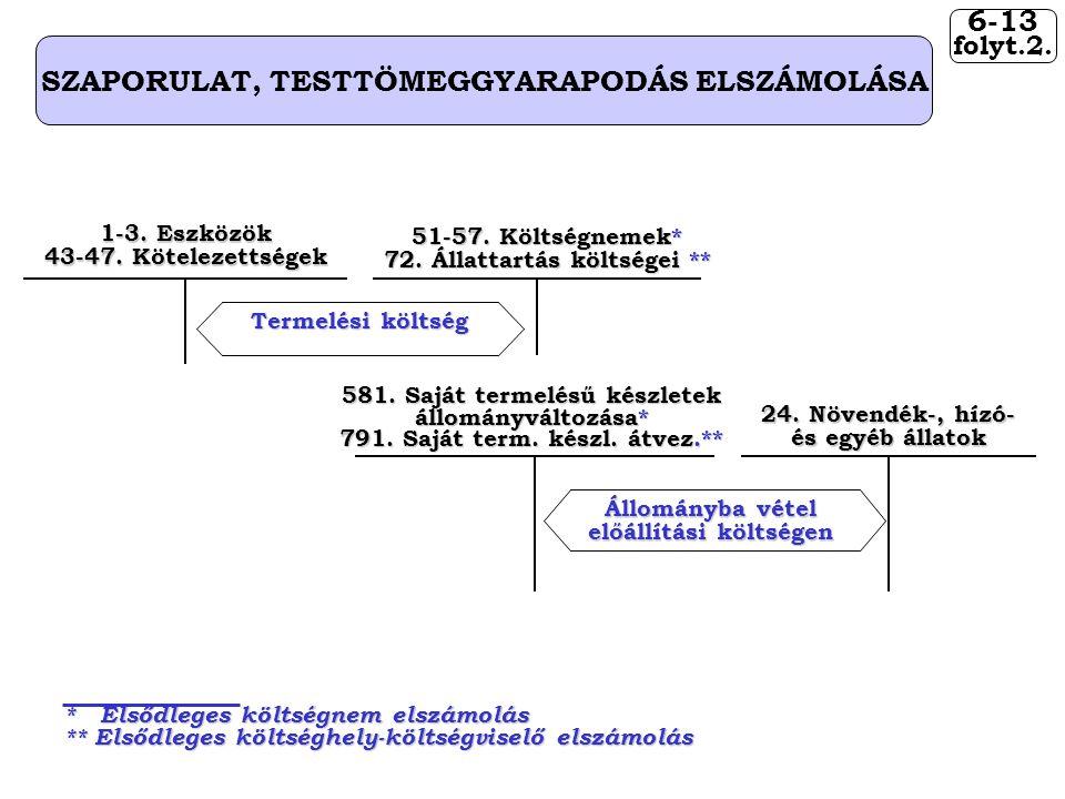 6-13 folyt.2. SZAPORULAT, TESTTÖMEGGYARAPODÁS ELSZÁMOLÁSA 581.