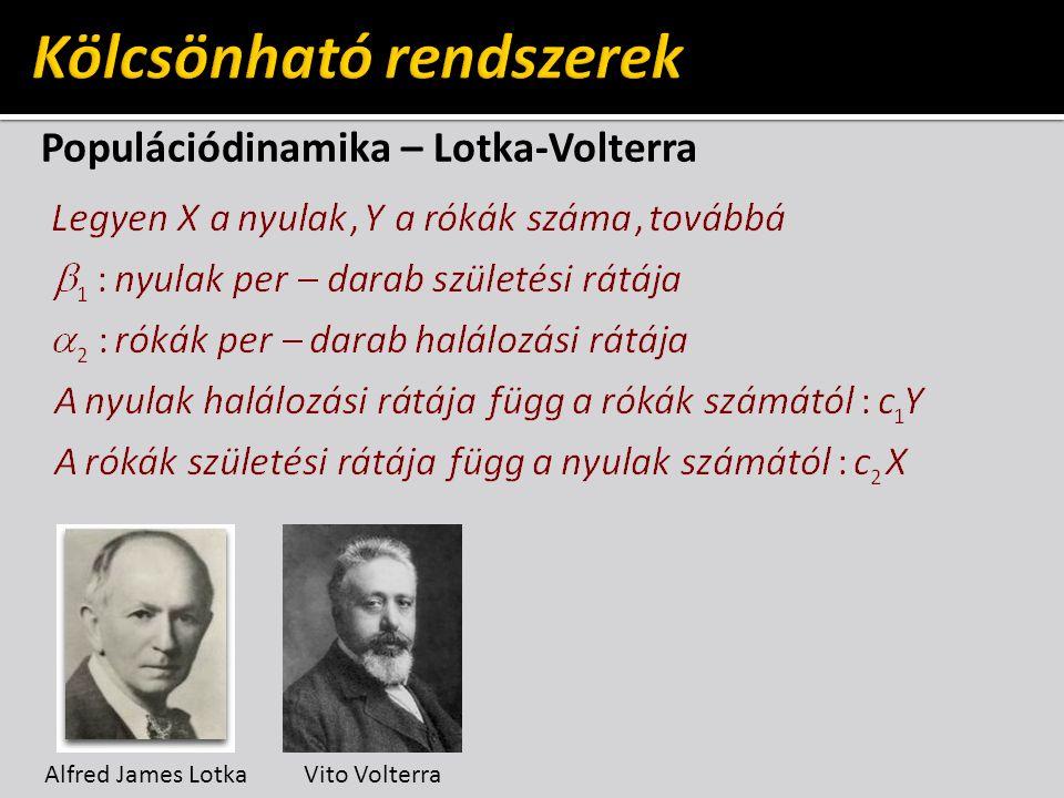 Populációdinamika – Lotka-Volterra Alfred James LotkaVito Volterra