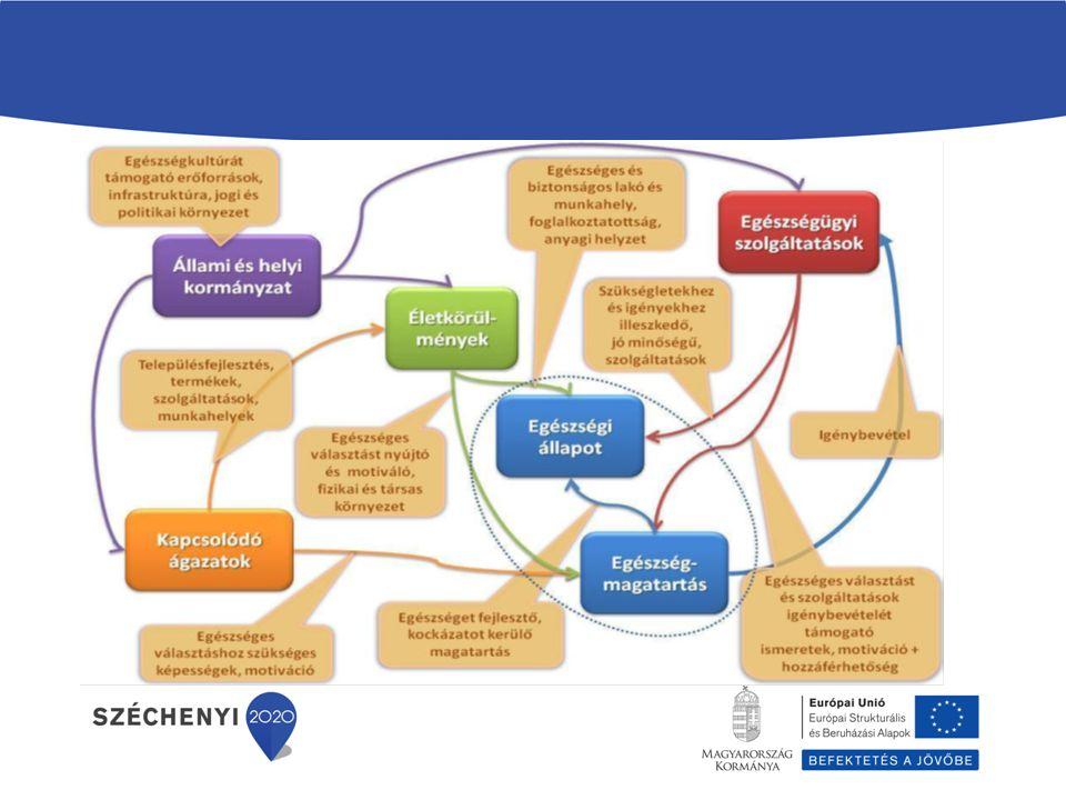 Egészségügyi szervezetek: - Háziorvosi praxisok - Fekvő és járóbeteg szakellátás intézményei - Egészségfejlesztési Irodák, Védőnői szolgálat - Iskola és foglalkozás egészségügy - Fogászati szolgáltatók, Patikák - Térségi egészségszervezés - GYEMSZI területi egységei, OEP - Országos szakmai szervezetek - Megyei Kormányhivatal NSzSz Helyi közösségek: - Önkormányzatok - Nemzetiségi önkormányzatok - Non profit szervezetek - Kulturális, vallási közösségek Egyéb ágazatok szervezetei: - Oktatás (alap, középfokú, felsőfokú intézmények) - Szociális (szociális otthonok, rehabilitációs intézmények, átmeneti elhelyezést nyújtó intézmények) - Munkaügyi hivatalok - Sport (sportszervezetek) - Rendfenntartó szervezetek (rendőrség) - Terület/településfejlesztés szervezetei - Megyei közlekedési felügyeletek Gazdasági szervezetek: - Nagy létszámú, vagy fokozott egészségi kockázatnak kitett munkavállalókat foglalkoztató munkahelyek - Mezőgazdasági termelők - Élelmiszer, sport- és egészségvédelmi eszközöket forgalmazó és gyártó vállalkozások - Gyógyászati segédeszköz gyártók Közösségi egészségszervezők