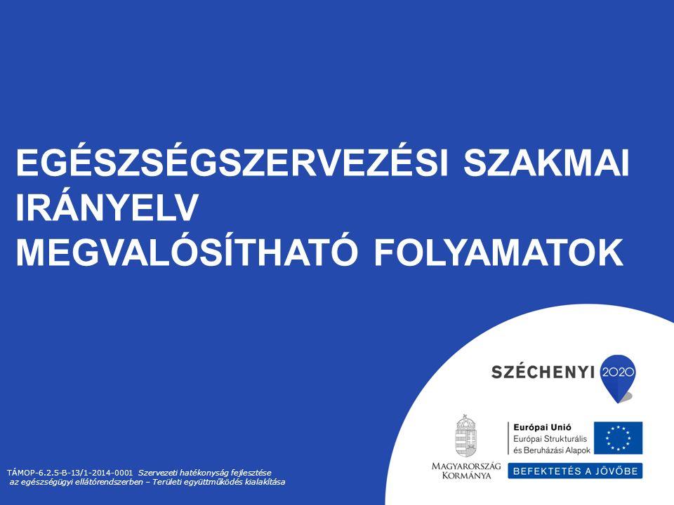 EGÉSZSÉGSZERVEZÉSI SZAKMAI IRÁNYELV MEGVALÓSÍTHATÓ FOLYAMATOK TÁMOP-6.2.5-B-13/1-2014-0001 Szervezeti hatékonyság fejlesztése az egészségügyi ellátórendszerben – Területi együttműködés kialakítása
