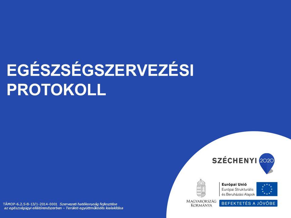 EGÉSZSÉGSZERVEZÉSI PROTOKOLL TÁMOP-6.2.5-B-13/1-2014-0001 Szervezeti hatékonyság fejlesztése az egészségügyi ellátórendszerben – Területi együttműködés kialakítása