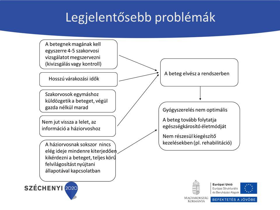 Legjelentősebb problémák