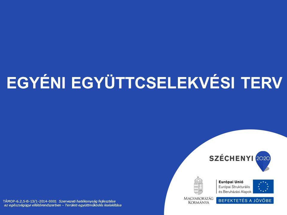 EGYÉNI EGYÜTTCSELEKVÉSI TERV TÁMOP-6.2.5-B-13/1-2014-0001 Szervezeti hatékonyság fejlesztése az egészségügyi ellátórendszerben – Területi együttműködés kialakítása