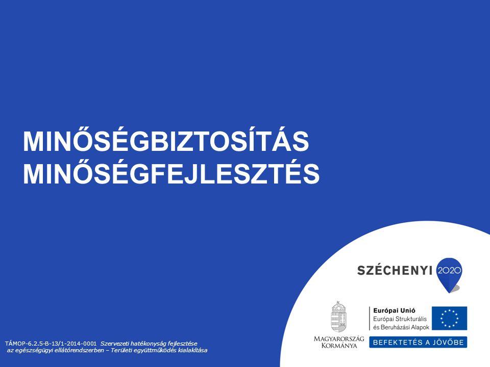 MINŐSÉGBIZTOSÍTÁS MINŐSÉGFEJLESZTÉS TÁMOP-6.2.5-B-13/1-2014-0001 Szervezeti hatékonyság fejlesztése az egészségügyi ellátórendszerben – Területi együttműködés kialakítása