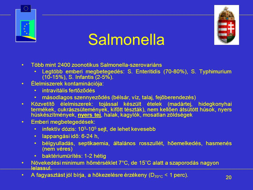 20 Salmonella Több mint 2400 zoonotikus Salmonella-szerovariáns Legtöbb emberi megbetegedés: S. Enteritidis (70-80%), S. Typhimurium (10-15%), S. Infa
