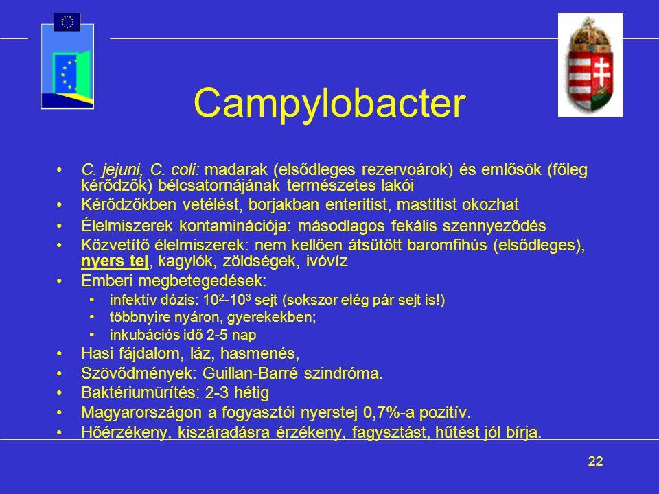 22 Campylobacter C. jejuni, C. coli: madarak (elsődleges rezervoárok) és emlősök (főleg kérődzők) bélcsatornájának természetes lakói Kérődzőkben vetél