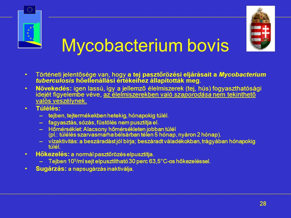 28 Mycobacterium bovis Történeti jelentősége van, hogy a tej pasztőrözési eljárásait a Mycobacterium tuberculosis hőellenállási értékeihez állapították meg.