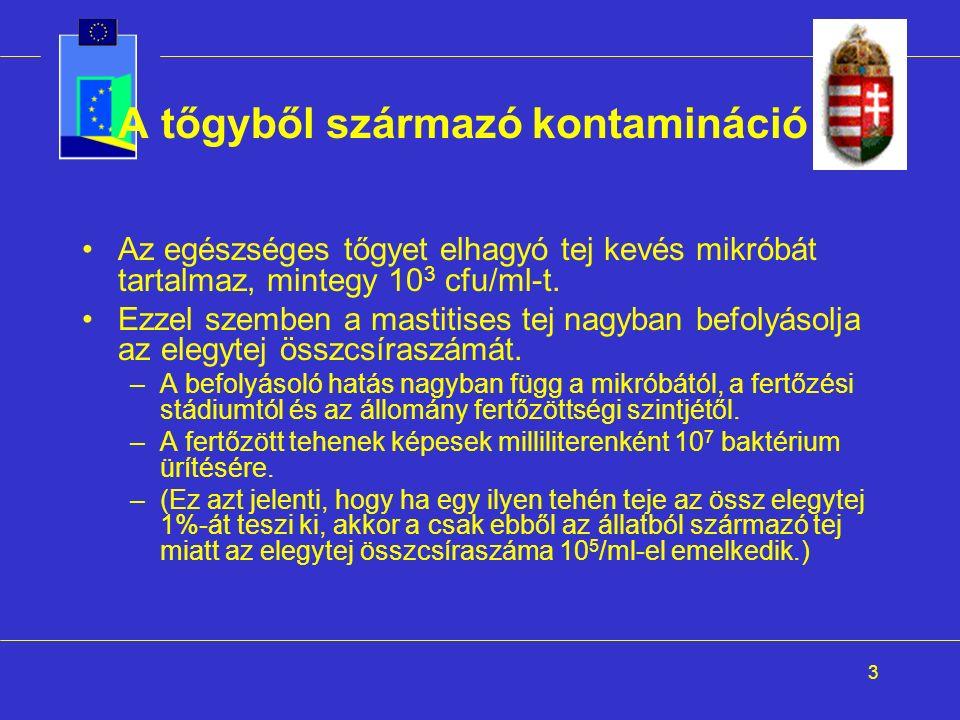 3 A tőgyből származó kontamináció I.
