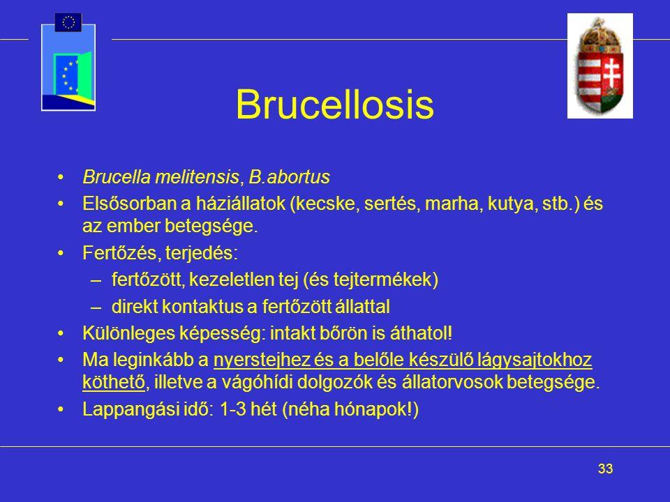 33 Brucellosis Brucella melitensis, B.abortus Elsősorban a háziállatok (kecske, sertés, marha, kutya, stb.) és az ember betegsége. Fertőzés, terjedés: