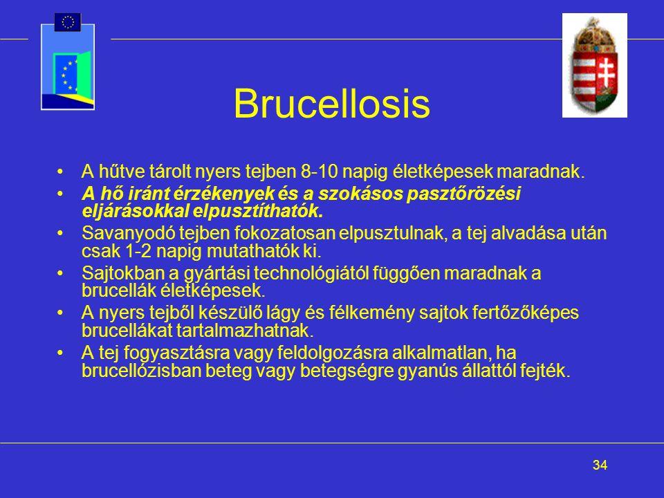 34 Brucellosis A hűtve tárolt nyers tejben 8-10 napig életképesek maradnak. A hő iránt érzékenyek és a szokásos pasztőrözési eljárásokkal elpusztíthat