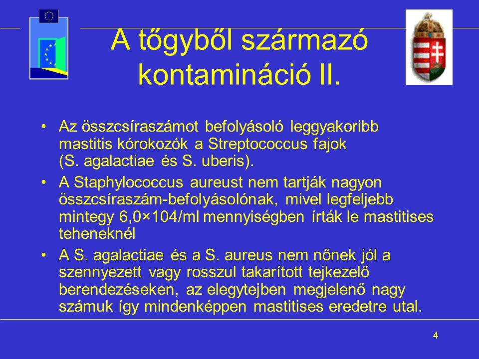 4 A tőgyből származó kontamináció II. Az összcsíraszámot befolyásoló leggyakoribb mastitis kórokozók a Streptococcus fajok (S. agalactiae és S. uberis