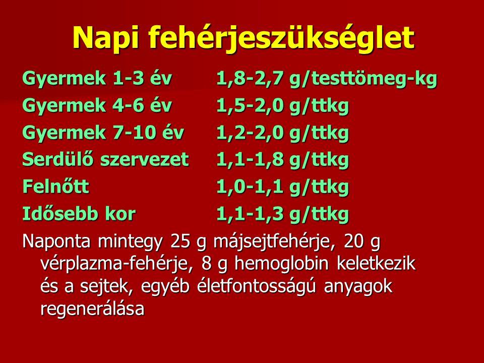 Napi fehérjeszükséglet Gyermek 1-3 év1,8-2,7 g/testtömeg-kg Gyermek 4-6 év1,5-2,0 g/ttkg Gyermek 7-10 év1,2-2,0 g/ttkg Serdülő szervezet1,1-1,8 g/ttkg Felnőtt1,0-1,1 g/ttkg Idősebb kor1,1-1,3 g/ttkg Naponta mintegy 25 g májsejtfehérje, 20 g vérplazma-fehérje, 8 g hemoglobin keletkezik és a sejtek, egyéb életfontosságú anyagok regenerálása