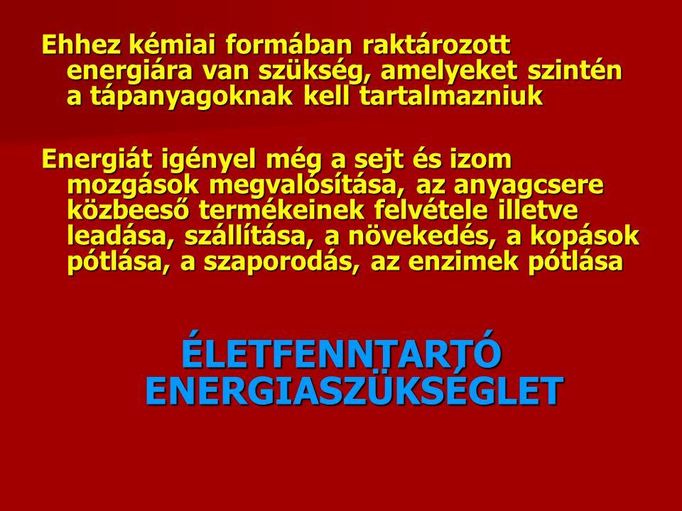 Ehhez kémiai formában raktározott energiára van szükség, amelyeket szintén a tápanyagoknak kell tartalmazniuk Energiát igényel még a sejt és izom mozgások megvalósítása, az anyagcsere közbeeső termékeinek felvétele illetve leadása, szállítása, a növekedés, a kopások pótlása, a szaporodás, az enzimek pótlása ÉLETFENNTARTÓ ENERGIASZÜKSÉGLET