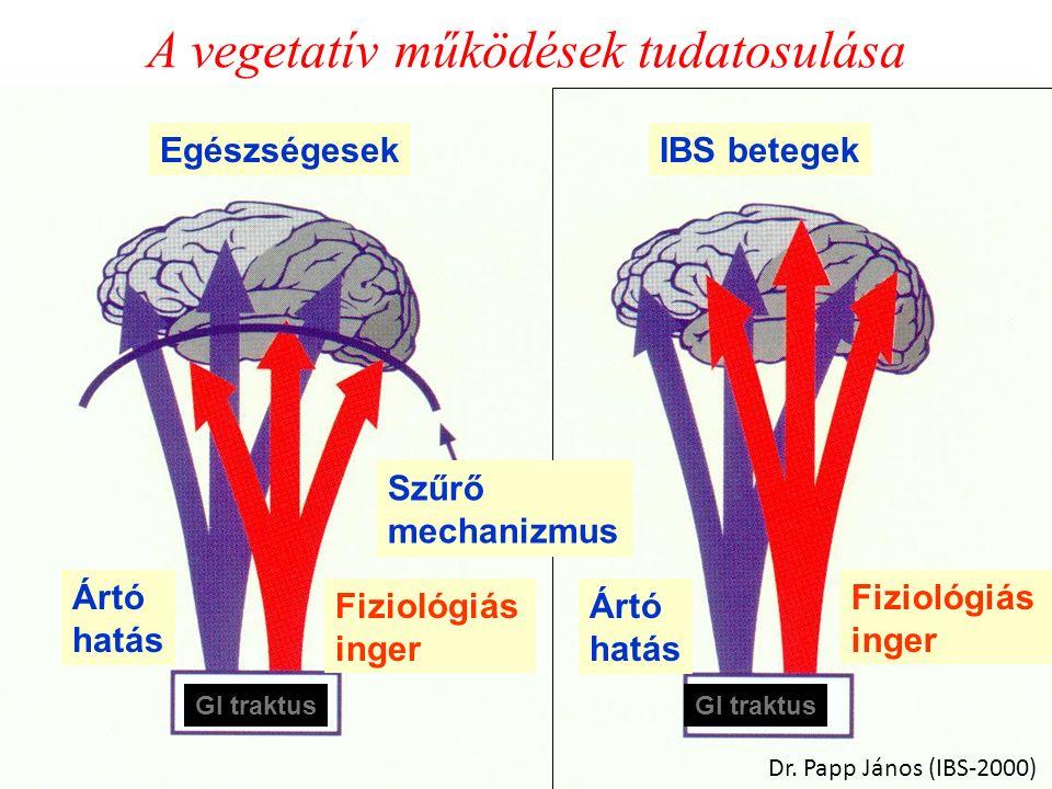 A vegetatív működések tudatosulása EgészségesekIBS betegek Ártó hatás Fiziológiás inger Fiziológiás inger Ártó hatás GI traktus Szűrő mechanizmus Dr.