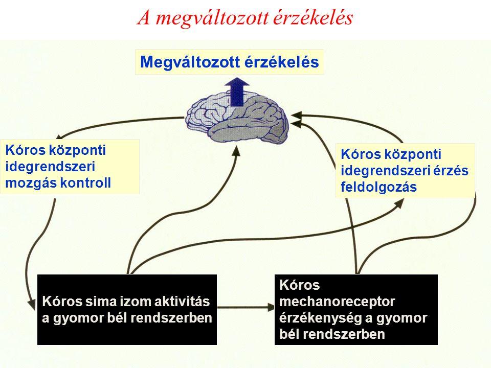 A megváltozott érzékelés Megváltozott érzékelés Kóros központi idegrendszeri mozgás kontroll Kóros központi idegrendszeri érzés feldolgozás Kóros sima izom aktivitás a gyomor bél rendszerben Kóros mechanoreceptor érzékenység a gyomor bél rendszerben
