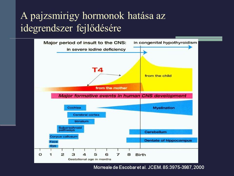 Morreale de Escobar et al. JCEM. 85:3975-3987, 2000 A pajzsmirigy hormonok hatása az idegrendszer fejlődésére