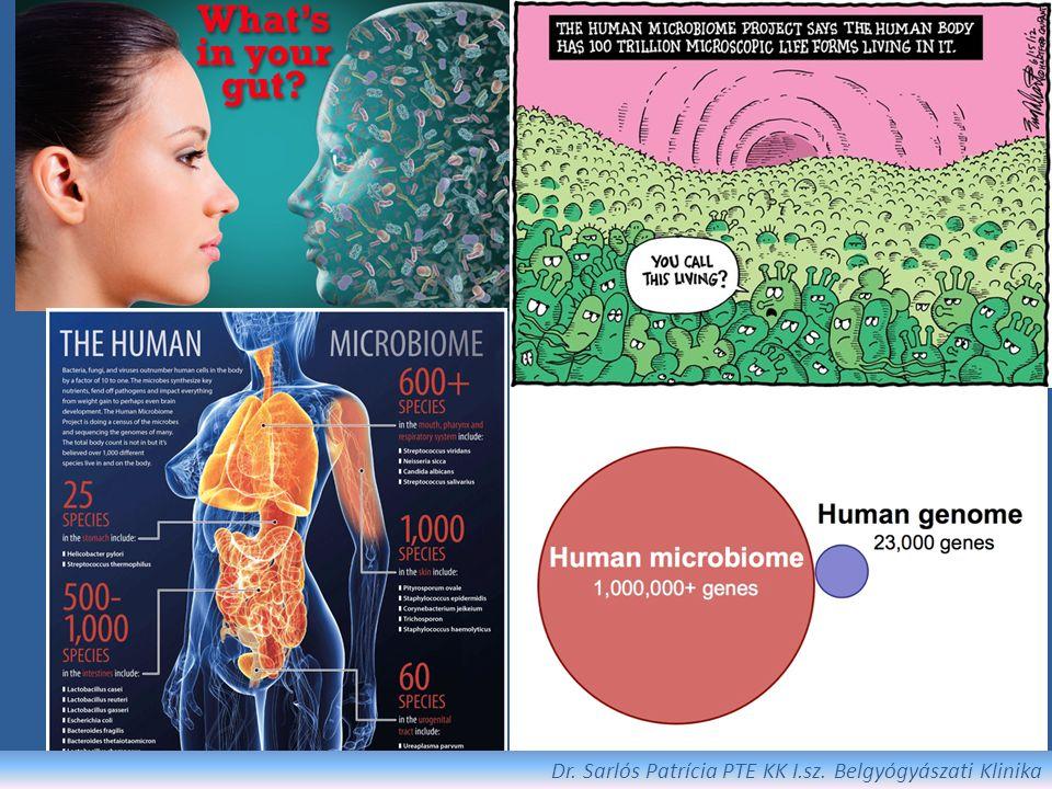 """Környezeti tényezők Diéta: megnövekedett cukorfogyasztás, sok n-6 és kevés n-3 zsírsav (nyugati típusú étkezés) FODMAP hipotézis (Fermentable Oligo-, Di- and Mono- saccharides And Polyols) """"cold chain hipotézis (ún."""