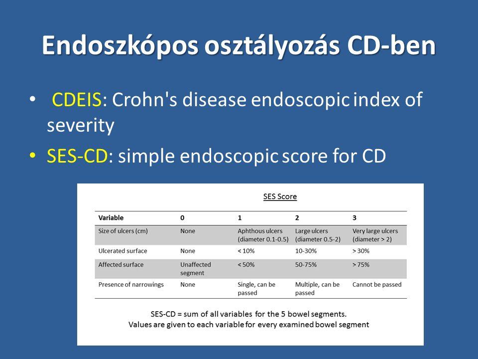 PDAI: Perianal disease activity index Váladék: 0 (0 - nincs, 1- minimális nyák, 2- közepes nyák, 3 - jelentős váladék, 4 - nagy mennyiségű széklet) Fájdalom: 0 (0 - nincs, 1 - enyhe diszkomfort, 2 - közepes diszkomfort némi korlátozottsággal, 3 - jelentős diszkomfort korlátozottsággal, 4 - erős fájdalom) Szexuális korlátozottság: 0 (0 - nincs, 1 - enyhe, 2 - közepes, 3 - jelentős, 4 - képtelen) Perianalis betegség típusa: 2 (0 - nincs, 1 - fissura, 2 - 3-nál kevesebb fistula, 3 - 3 vagy több fistula, 4 - sphincter érintettség) Induráció mértéke: 0 (0 - nincs, 1 - minimális, 2 - közepes, 3 - jelentős, 4 - kifejezett/tályog) Irvine et al.