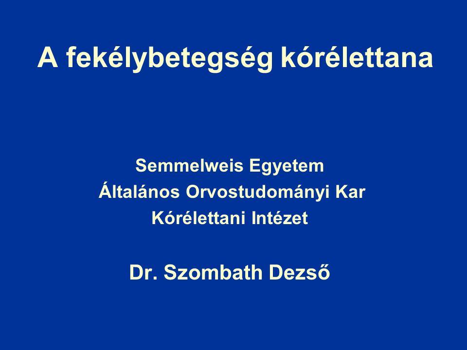 A fekélybetegség kórélettana Semmelweis Egyetem Általános Orvostudományi Kar Kórélettani Intézet Dr.