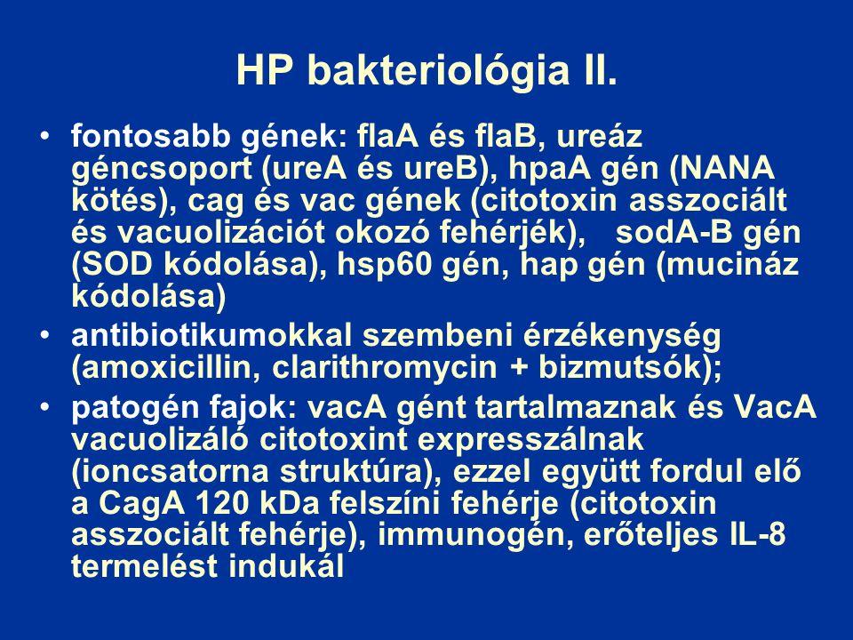 HP bakteriológia II.