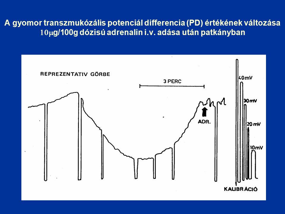 A gyomor transzmukózális potenciál differencia (PD) értékének változása  g/100g dózisú adrenalin i.v.