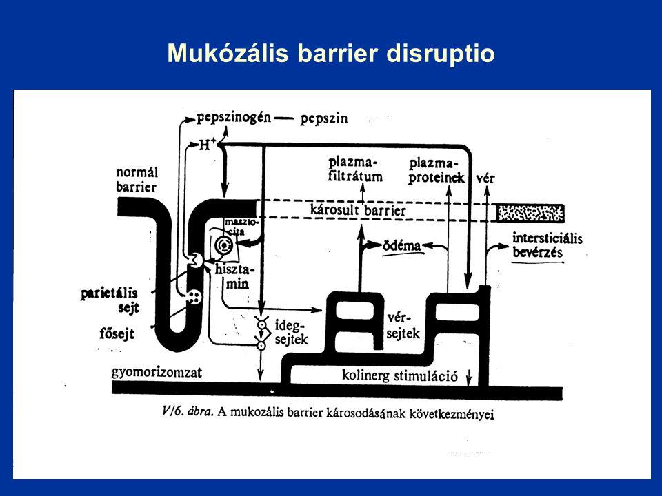 Mukózális barrier disruptio