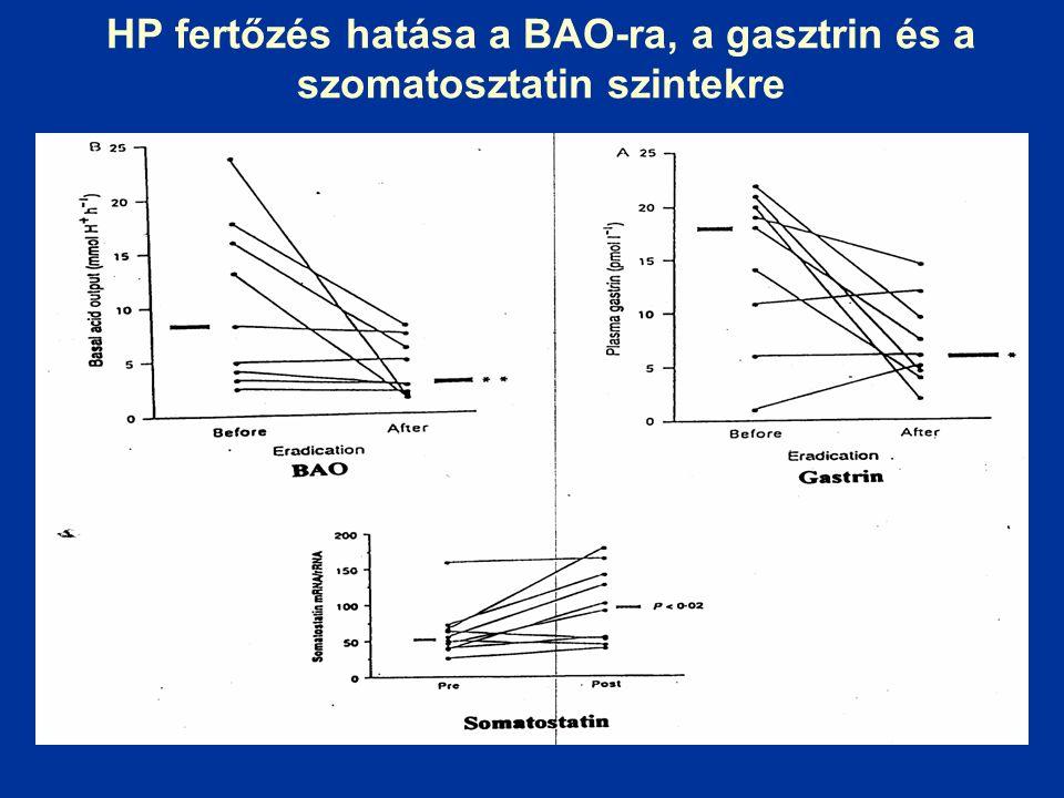 HP fertőzés hatása a BAO-ra, a gasztrin és a szomatosztatin szintekre